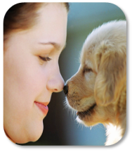 Image of little girl and a puppy rubbing noses
